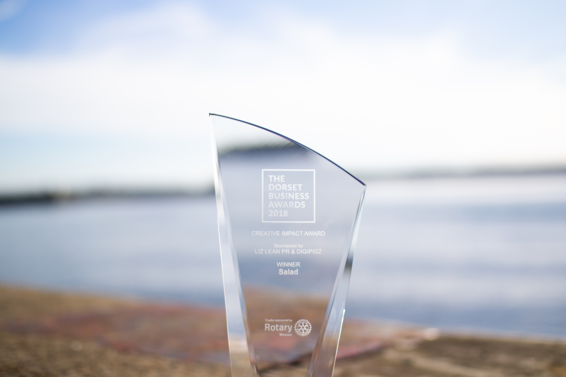 Salad and Team England win Creative Impact Award